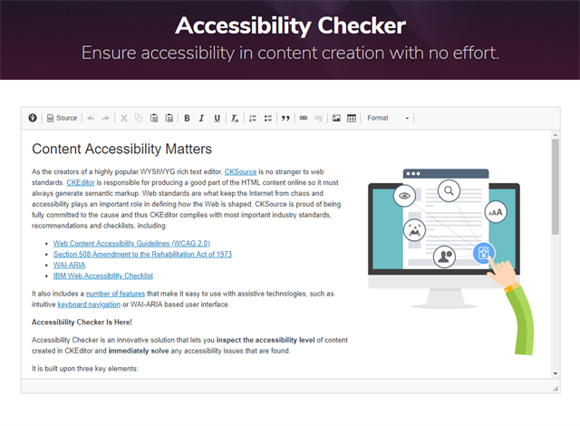 Accessibility checker example